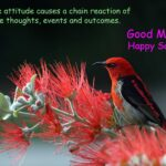 Saturday Positive Quotes - scarlet honeyeater bird red feathers